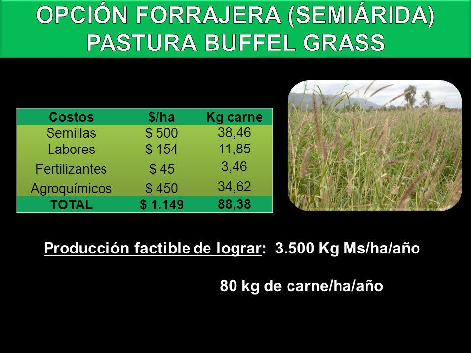 : Producción factible de lograr: 3.500 Kg Ms/ha/año 80 kg de carne/ha/año Fuente: Elaboración propia en base a valores de la revista Márgenes Agroperc