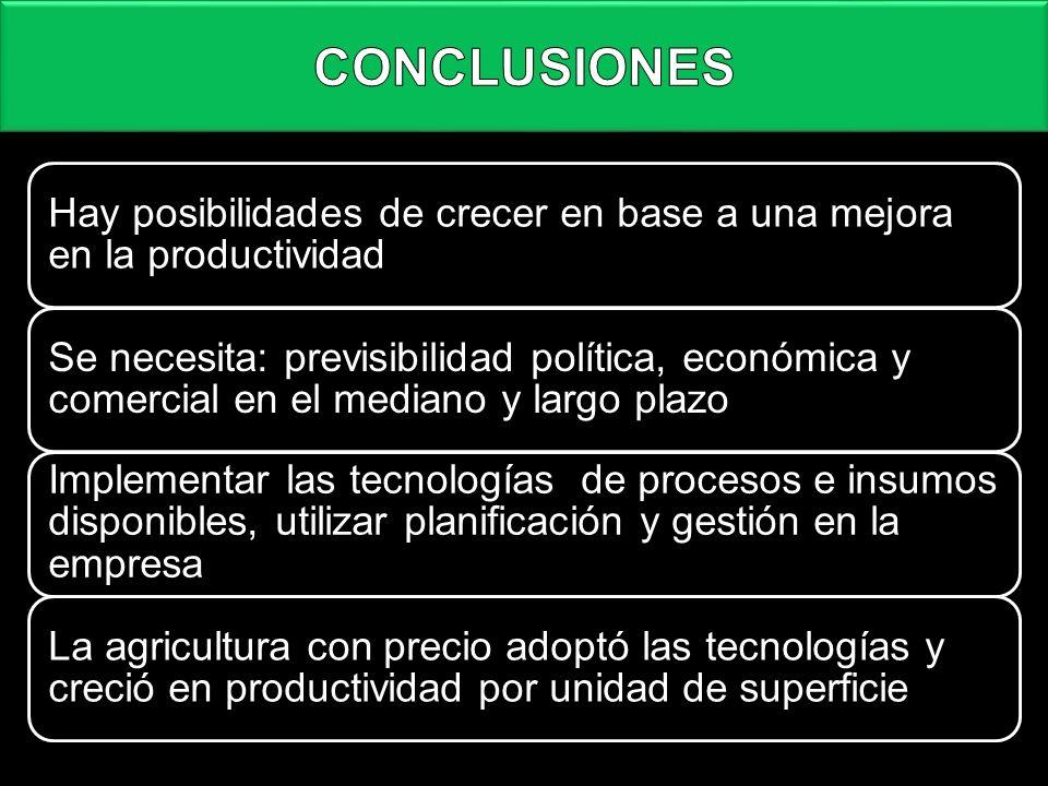 CONCLUSIONES Hay posibilidades de crecer en base a una mejora en la productividad Se necesita: previsibilidad política, económica y comercial en el me