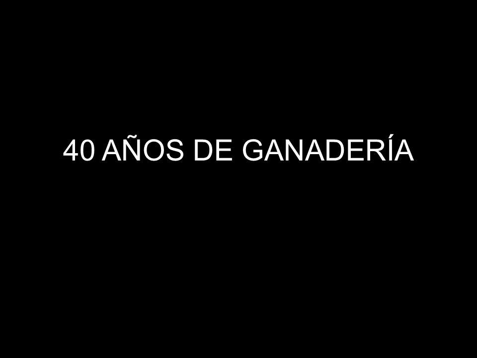 40 AÑOS DE GANADERÍA