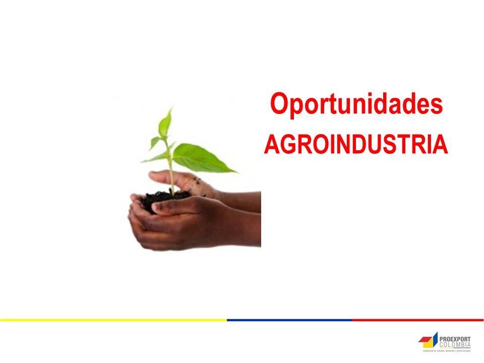 AGROINDUSTRIA Oportunidades