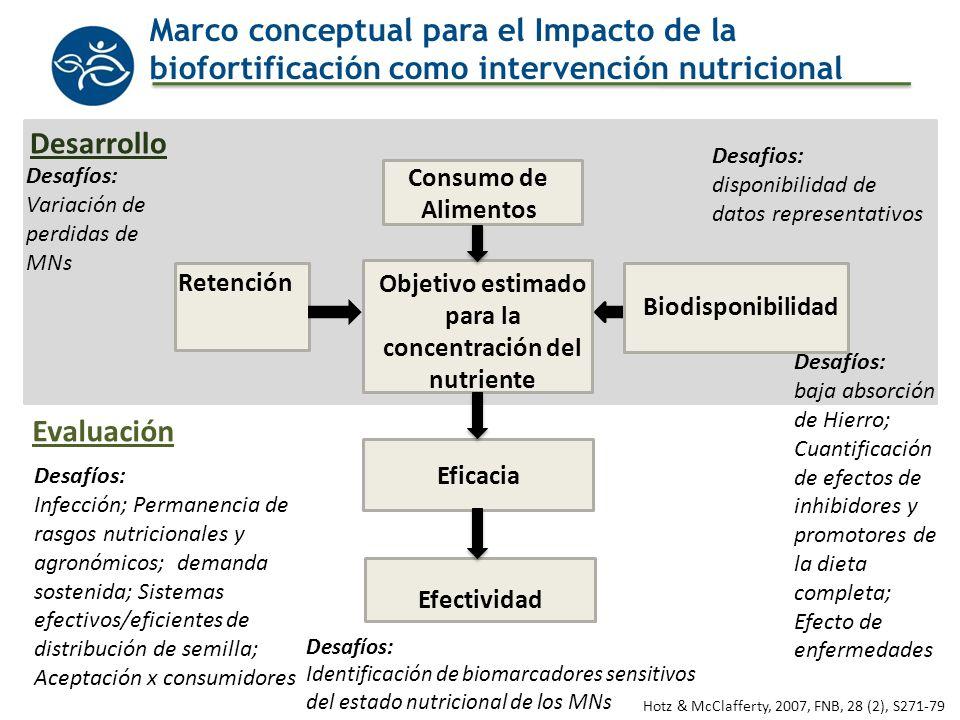 HarvestPlus: Fases de Investigación en Nutrición Objetivo Inicial Mínimo Eficacia (ECC) Efectividad De ensayo De programa Desarrollo Evaluación Consumo del Alimento Retención del nutriente Biodisponibilidad FNB 2007;28 (2), S271-79