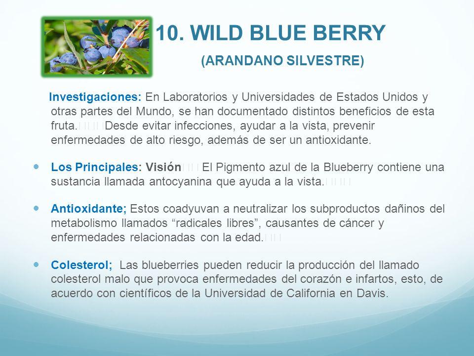 10. WILD BLUE BERRY (ARANDANO SILVESTRE) Investigaciones: En Laboratorios y Universidades de Estados Unidos y otras partes del Mundo, se han documenta