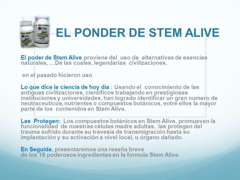 EL PONDER DE STEM ALIVE El poder de Stem Alive proviene del uso de alternativas de esencias naturales, …De las cuales, legendarias civilizaciones. en