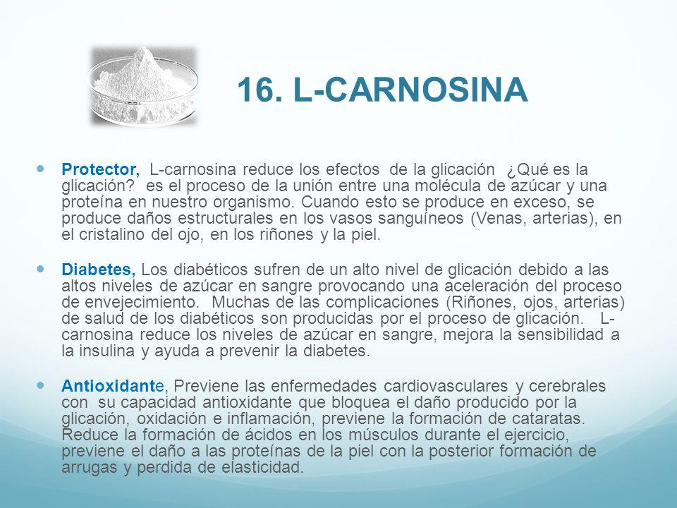 Protector, L-carnosina reduce los efectos de la glicación ¿Qué es la glicación? es el proceso de la unión entre una molécula de azúcar y una proteína
