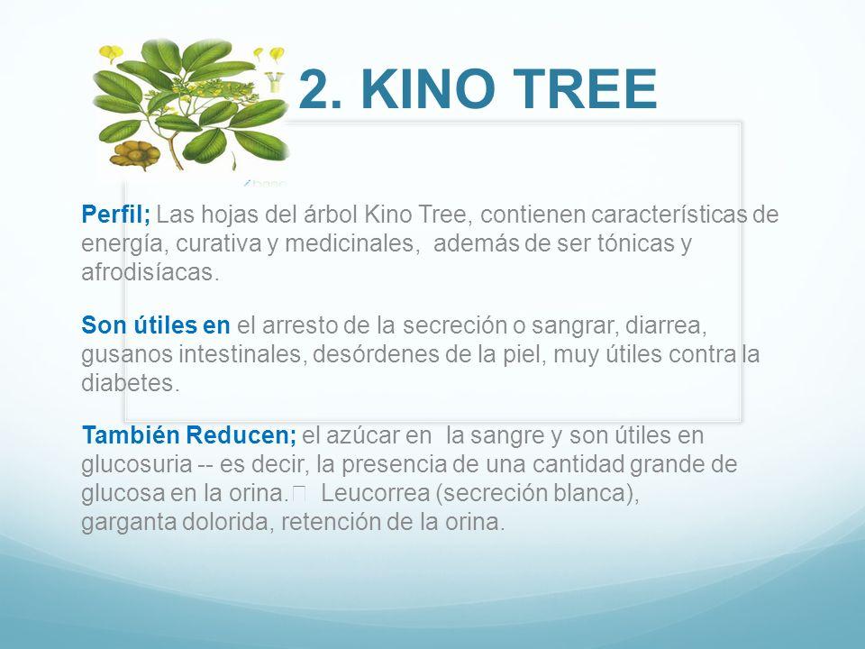 Perfil; Las hojas del árbol Kino Tree, contienen características de energía, curativa y medicinales, además de ser tónicas y afrodisíacas. Son útiles