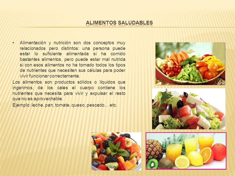 Obesidad Anorexia Bulimia Desnutrición