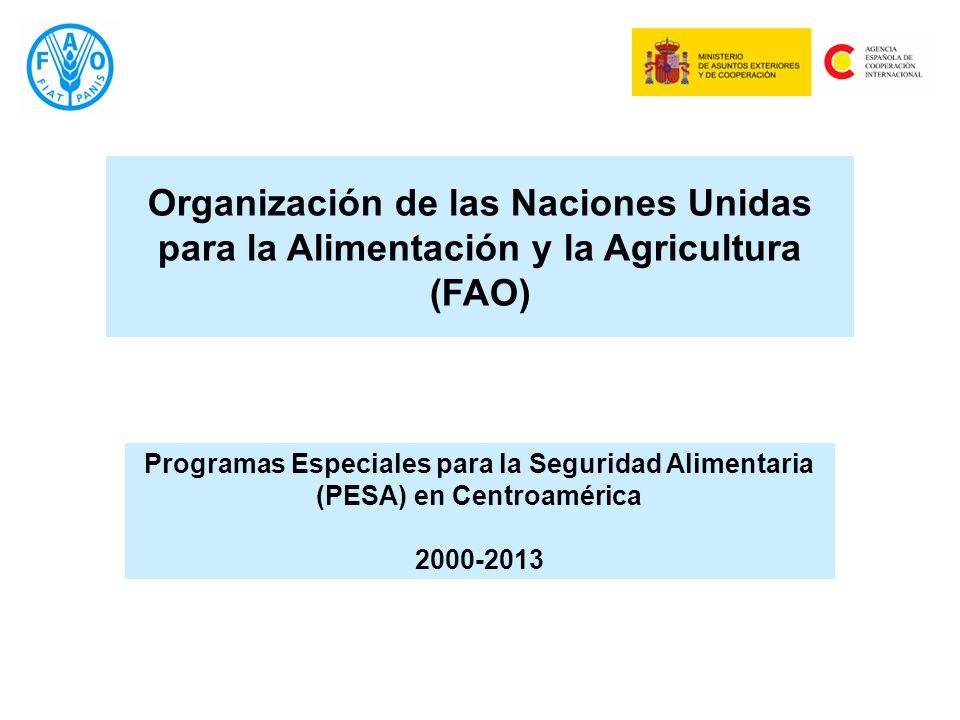 Programas Especiales para la Seguridad Alimentaria (PESA) en Centroamérica 2000-2013 Organización de las Naciones Unidas para la Alimentación y la Agricultura (FAO)