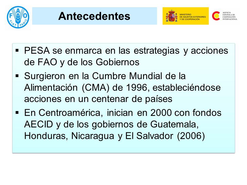 Antecedentes PESA se enmarca en las estrategias y acciones de FAO y de los Gobiernos Surgieron en la Cumbre Mundial de la Alimentación (CMA) de 1996, estableciéndose acciones en un centenar de países En Centroamérica, inician en 2000 con fondos AECID y de los gobiernos de Guatemala, Honduras, Nicaragua y El Salvador (2006) PESA se enmarca en las estrategias y acciones de FAO y de los Gobiernos Surgieron en la Cumbre Mundial de la Alimentación (CMA) de 1996, estableciéndose acciones en un centenar de países En Centroamérica, inician en 2000 con fondos AECID y de los gobiernos de Guatemala, Honduras, Nicaragua y El Salvador (2006)