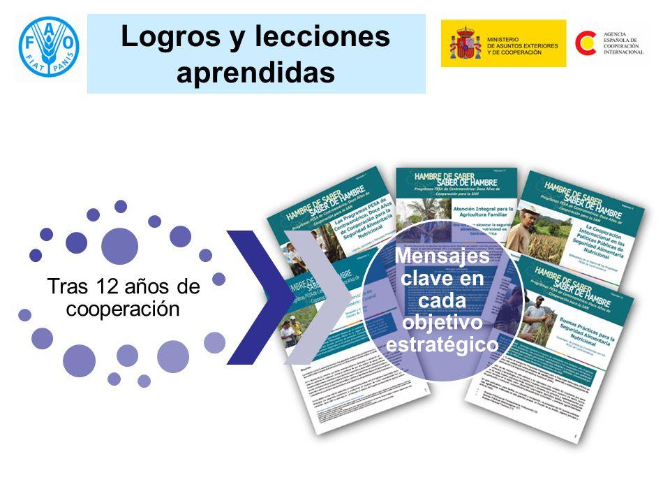 Logros y lecciones aprendidas Tras 12 años de cooperación Mensajes clave en cada objetivo estratégico