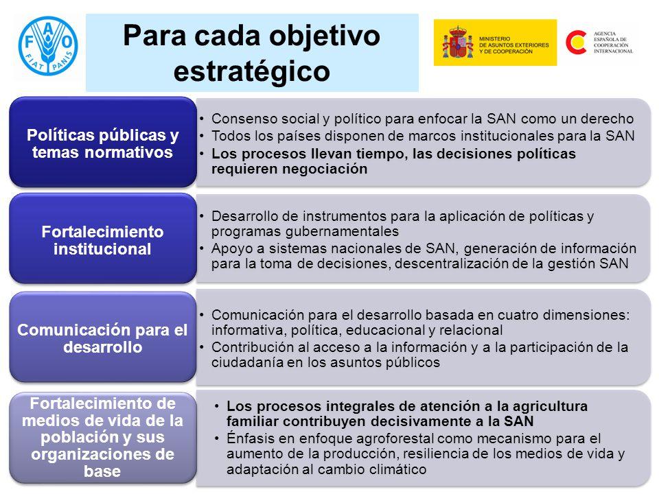 Para cada objetivo estratégico Consenso social y político para enfocar la SAN como un derecho Todos los países disponen de marcos institucionales para