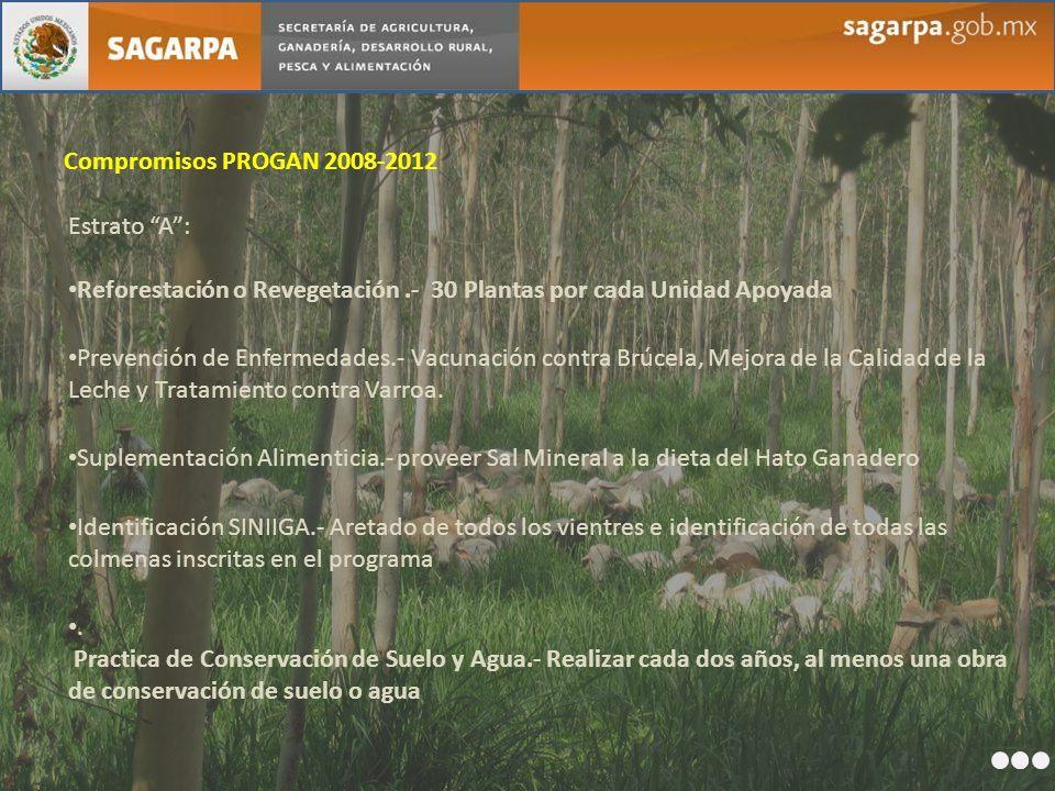 Compromisos PROGAN 2008-2012 Estrato A: Reforestación o Revegetación.- 30 Plantas por cada Unidad Apoyada Prevención de Enfermedades.- Vacunación cont