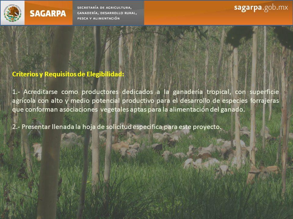 Criterios y Requisitos de Elegibilidad: 1.- Acreditarse como productores dedicados a la ganadería tropical, con superficie agrícola con alto y medio p