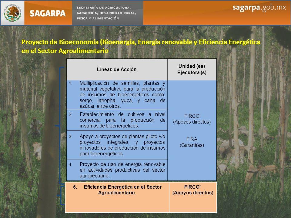 Proyecto de Bioeconomía (Bioenergía, Energía renovable y Eficiencia Energética en el Sector Agroalimentario Líneas de Acción Unidad (es) Ejecutora (s)