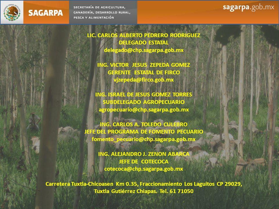 LIC. CARLOS ALBERTO PEDRERO RODRIGUEZ DELEGADO ESTATAL delegado@chp.sagarpa.gob.mx ING. VICTOR JESUS ZEPEDA GOMEZ GERENTE ESTATAL DE FIRCO vjzepeda@fi