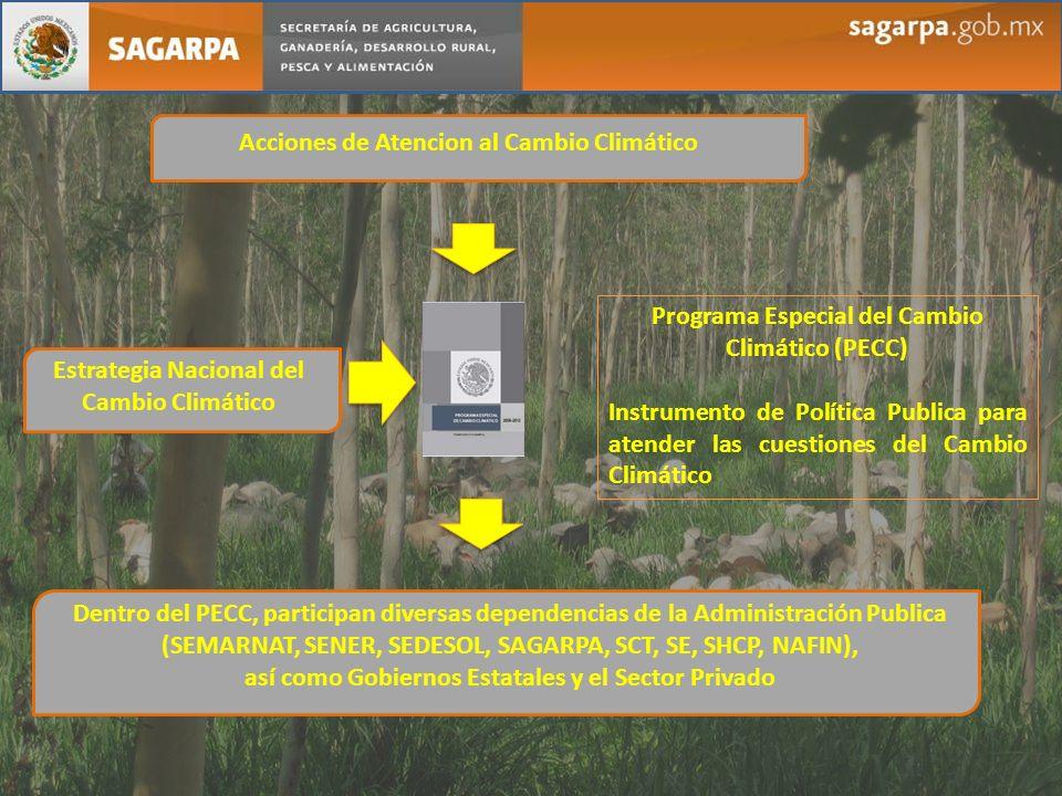 Acciones de Atencion al Cambio Climático Estrategia Nacional del Cambio Climático Programa Especial del Cambio Climático (PECC) Instrumento de Polític