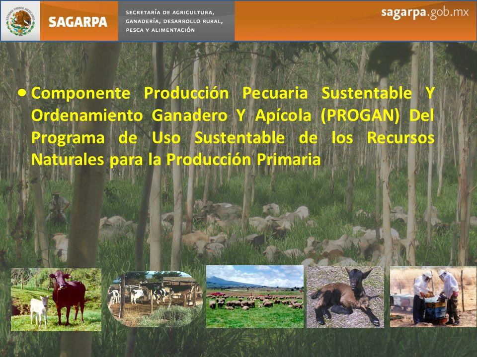 Componente Producción Pecuaria Sustentable Y Ordenamiento Ganadero Y Apícola (PROGAN) Del Programa de Uso Sustentable de los Recursos Naturales para l