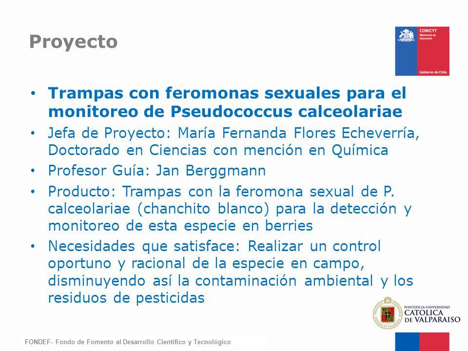 FONDEF-Fondo de Fomento Trampas con feromonas sexuales para el monitoreo de Pseudococcus calceolariae Jefa de Proyecto: María Fernanda Flores Echeverr
