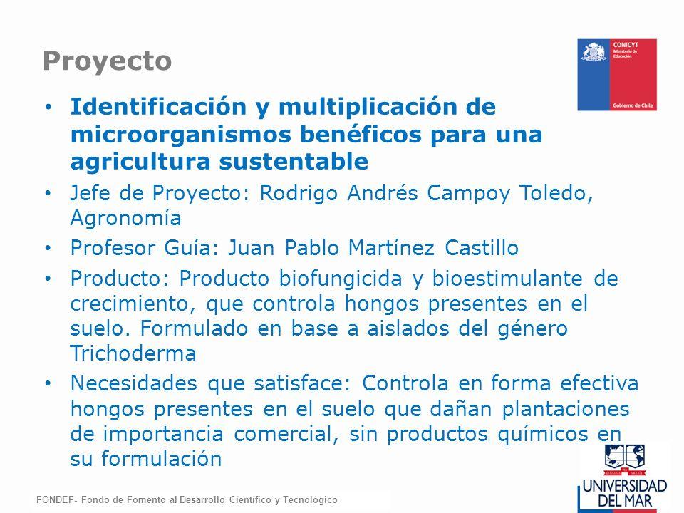 FONDEF-Fondo de Fomento Identificación y multiplicación de microorganismos benéficos para una agricultura sustentable Jefe de Proyecto: Rodrigo Andrés