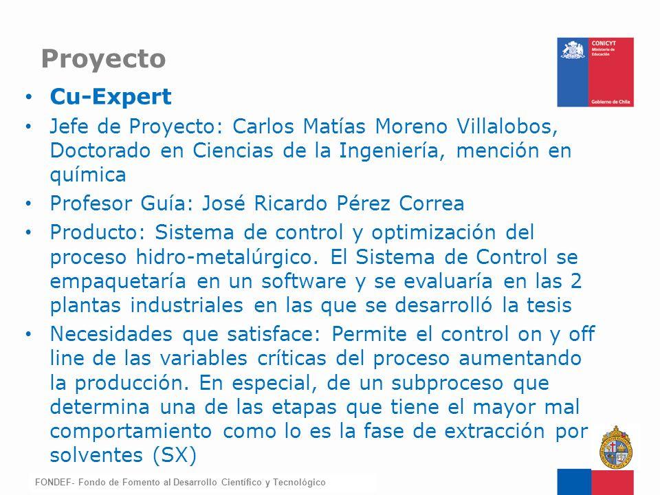FONDEF-Fondo de Fomento Cu-Expert Jefe de Proyecto: Carlos Matías Moreno Villalobos, Doctorado en Ciencias de la Ingeniería, mención en química Profes