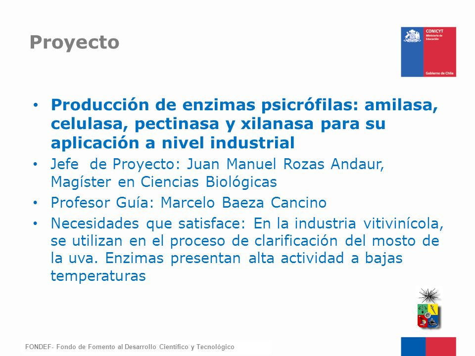 FONDEF-Fondo de Fomento Producción de enzimas psicrófilas: amilasa, celulasa, pectinasa y xilanasa para su aplicación a nivel industrial Jefe de Proye