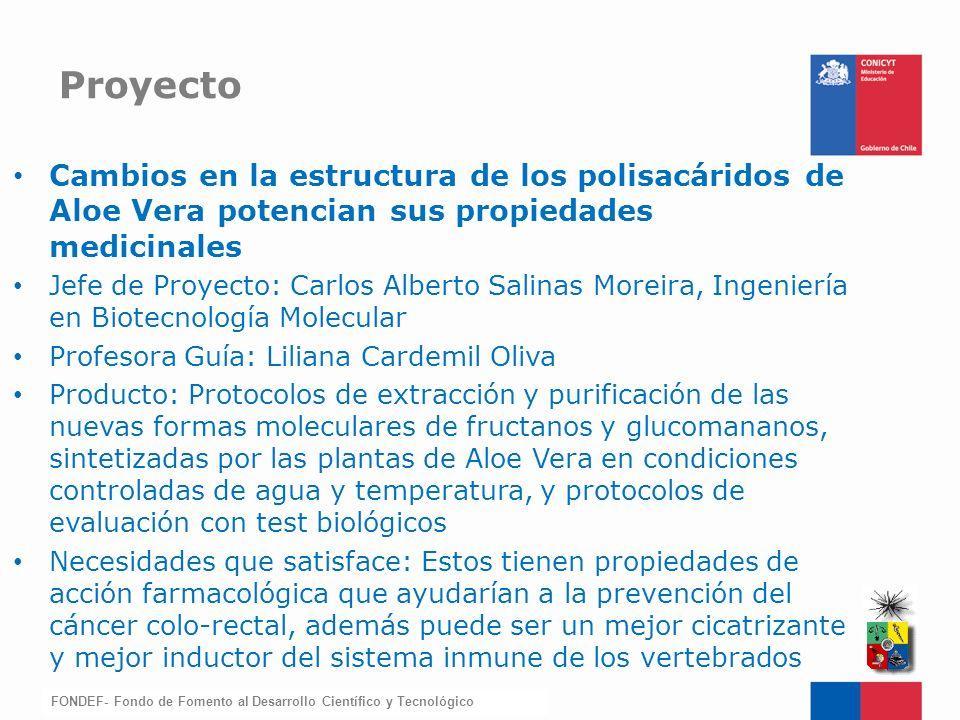 FONDEF-Fondo de Fomento Cambios en la estructura de los polisacáridos de Aloe Vera potencian sus propiedades medicinales Jefe de Proyecto: Carlos Albe
