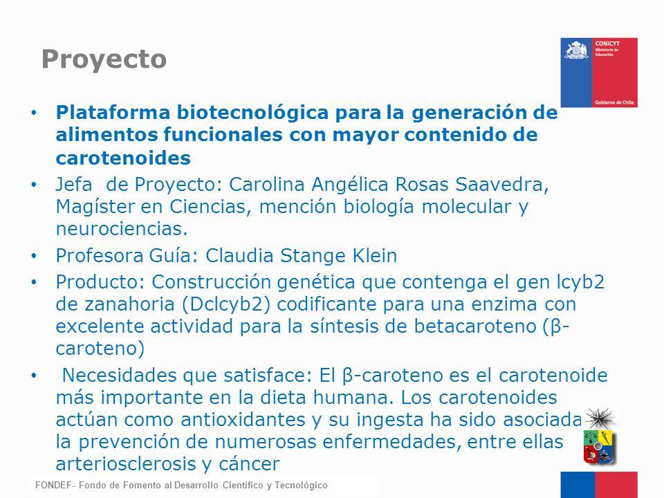 FONDEF-Fondo de Fomento Plataforma biotecnológica para la generación de alimentos funcionales con mayor contenido de carotenoides Jefa de Proyecto: Ca