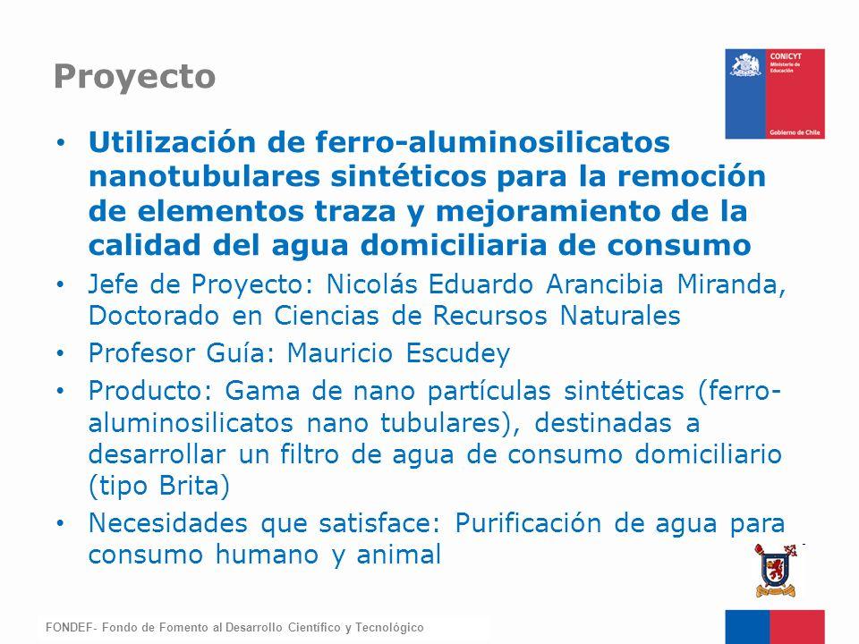 FONDEF-Fondo de Fomento Utilización de ferro-aluminosilicatos nanotubulares sintéticos para la remoción de elementos traza y mejoramiento de la calida