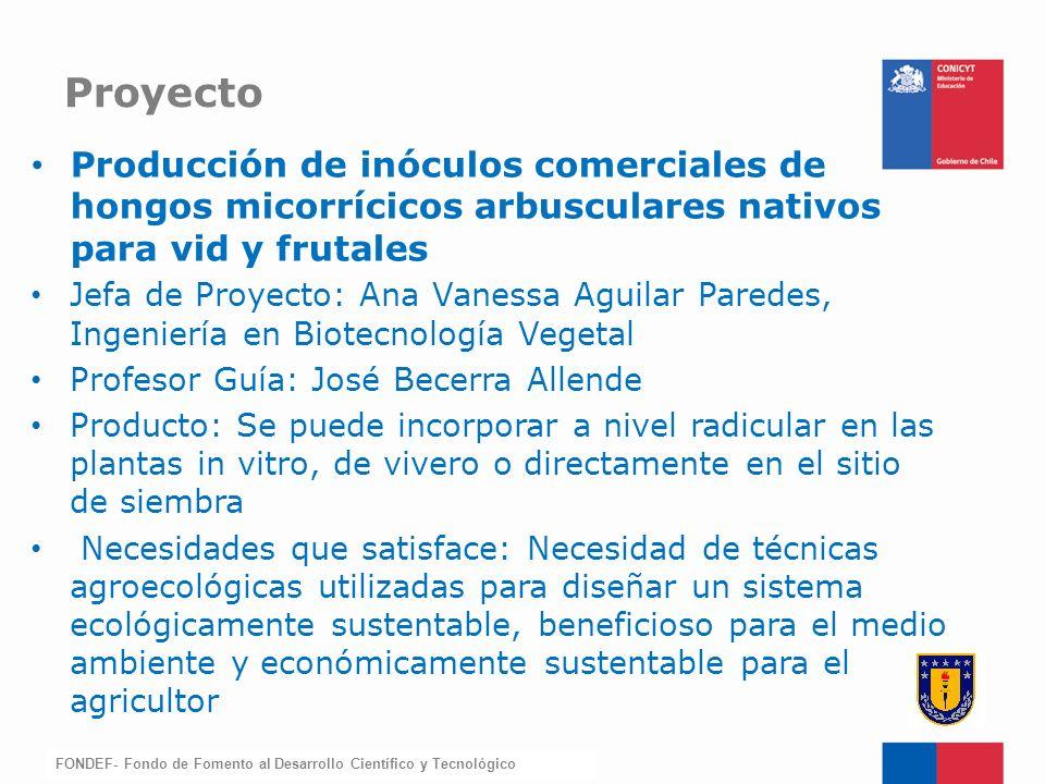 FONDEF-Fondo de Fomento Producción de inóculos comerciales de hongos micorrícicos arbusculares nativos para vid y frutales Jefa de Proyecto: Ana Vanes