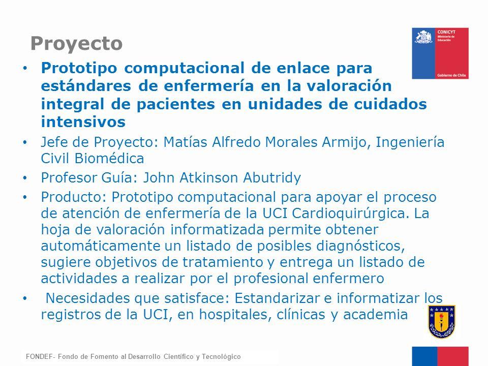 FONDEF-Fondo de Fomento Prototipo computacional de enlace para estándares de enfermería en la valoración integral de pacientes en unidades de cuidados