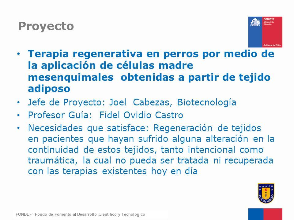 FONDEF-Fondo de Fomento Terapia regenerativa en perros por medio de la aplicación de células madre mesenquimales obtenidas a partir de tejido adiposo
