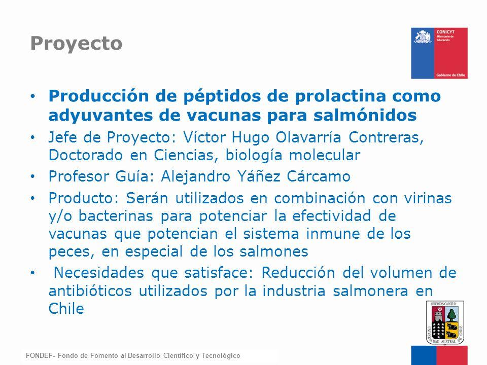 FONDEF-Fondo de Fomento Producción de péptidos de prolactina como adyuvantes de vacunas para salmónidos Jefe de Proyecto: Víctor Hugo Olavarría Contre