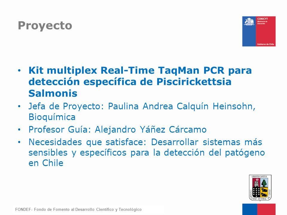 FONDEF-Fondo de Fomento Kit multiplex Real-Time TaqMan PCR para detección específica de Piscirickettsia Salmonis Jefa de Proyecto: Paulina Andrea Calq