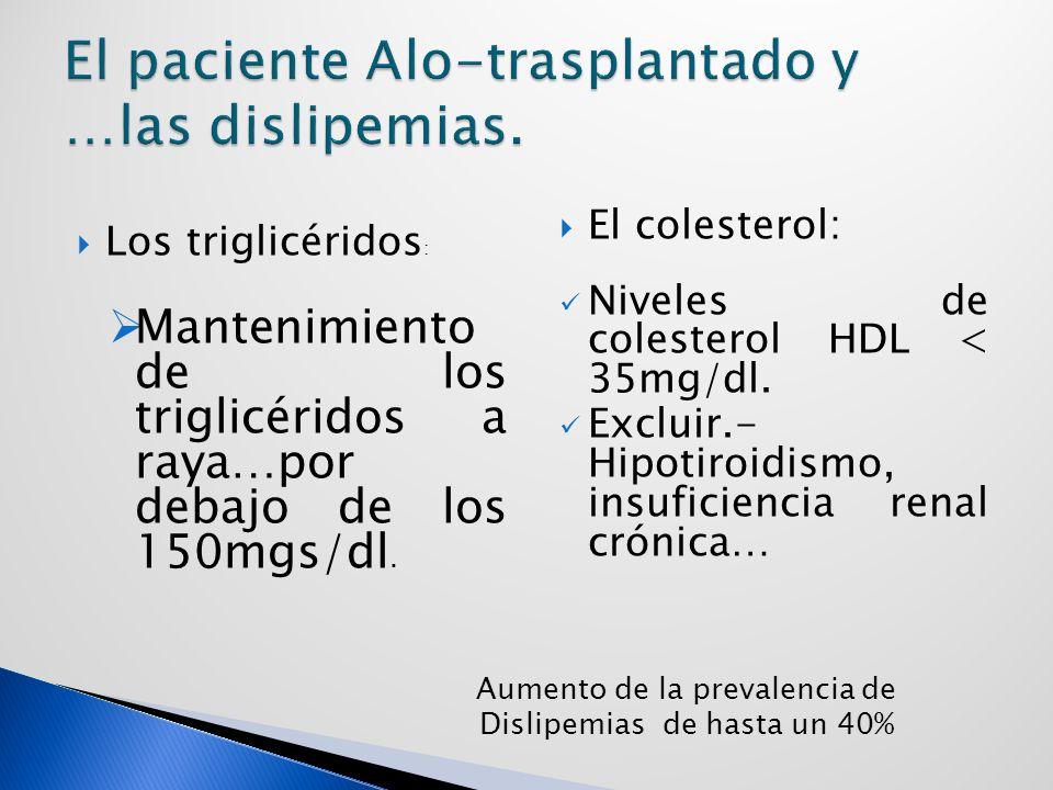 Los triglicéridos : Mantenimiento de los triglicéridos a raya…por debajo de los 150mgs/dl.