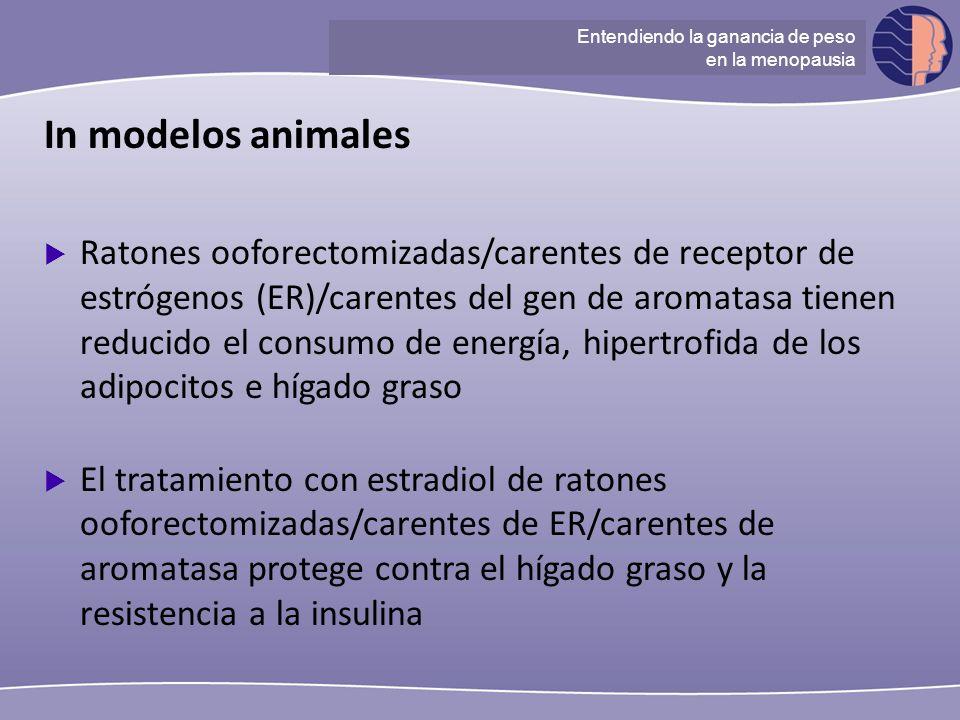 Understanding ganancia de peso at menopause In modelos animales Ratones ooforectomizadas/carentes de receptor de estrógenos (ER)/carentes del gen de a