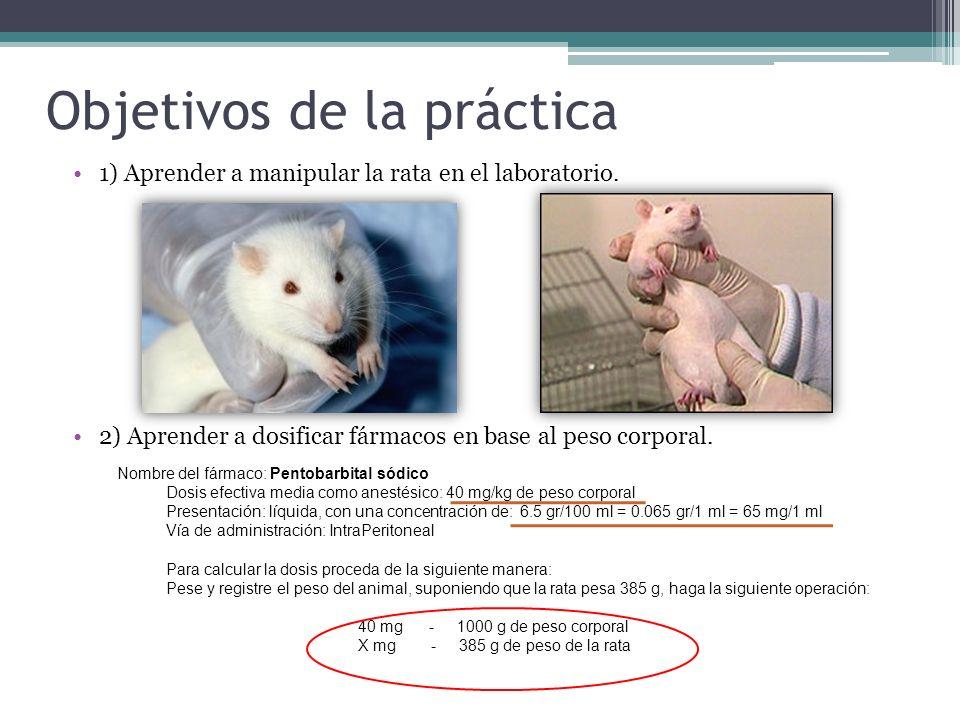 Objetivos de la práctica 1) Aprender a manipular la rata en el laboratorio. 2) Aprender a dosificar fármacos en base al peso corporal. Nombre del fárm
