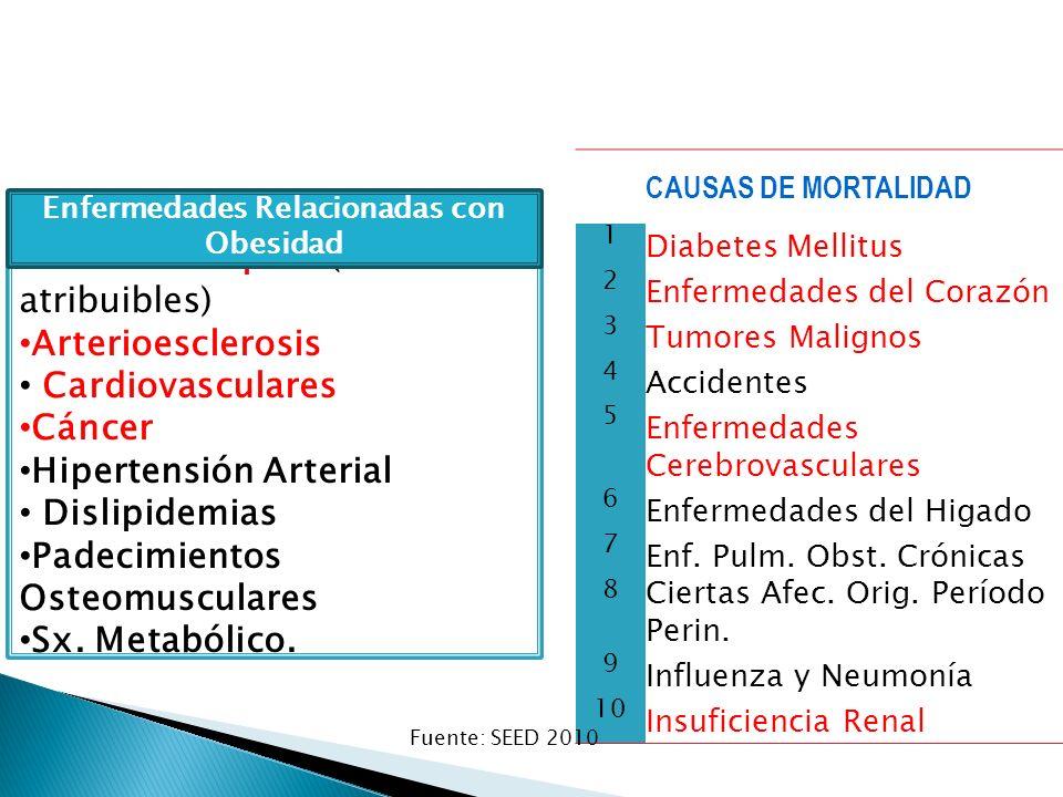 Efecto Negativo en la Salud: Diabetes Tipo 2 (90% atribuibles) Arterioesclerosis Cardiovasculares Cáncer Hipertensión Arterial Dislipidemias Padecimie