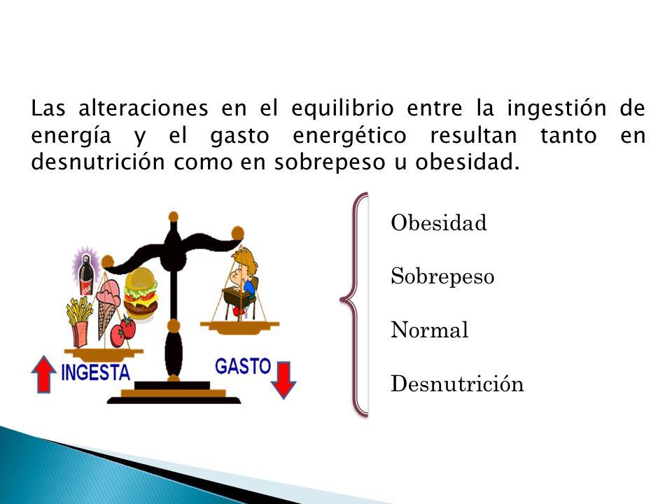 Obesidad Sobrepeso Normal Desnutrición Las alteraciones en el equilibrio entre la ingestión de energía y el gasto energético resultan tanto en desnutr