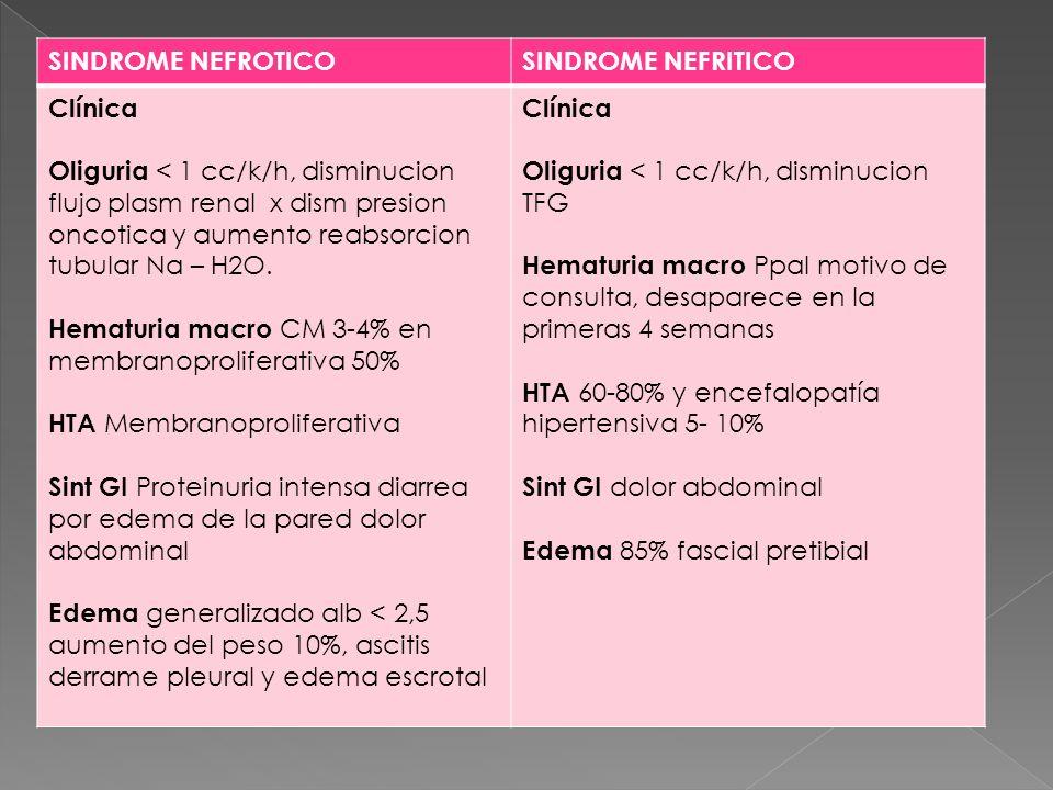 SINDROME NEFROTICOSINDROME NEFRITICO Clínica Oliguria < 1 cc/k/h, disminucion flujo plasm renal x dism presion oncotica y aumento reabsorcion tubular