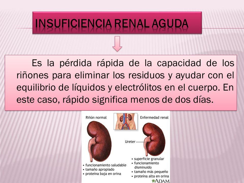 Es la pérdida rápida de la capacidad de los riñones para eliminar los residuos y ayudar con el equilibrio de líquidos y electrólitos en el cuerpo. En