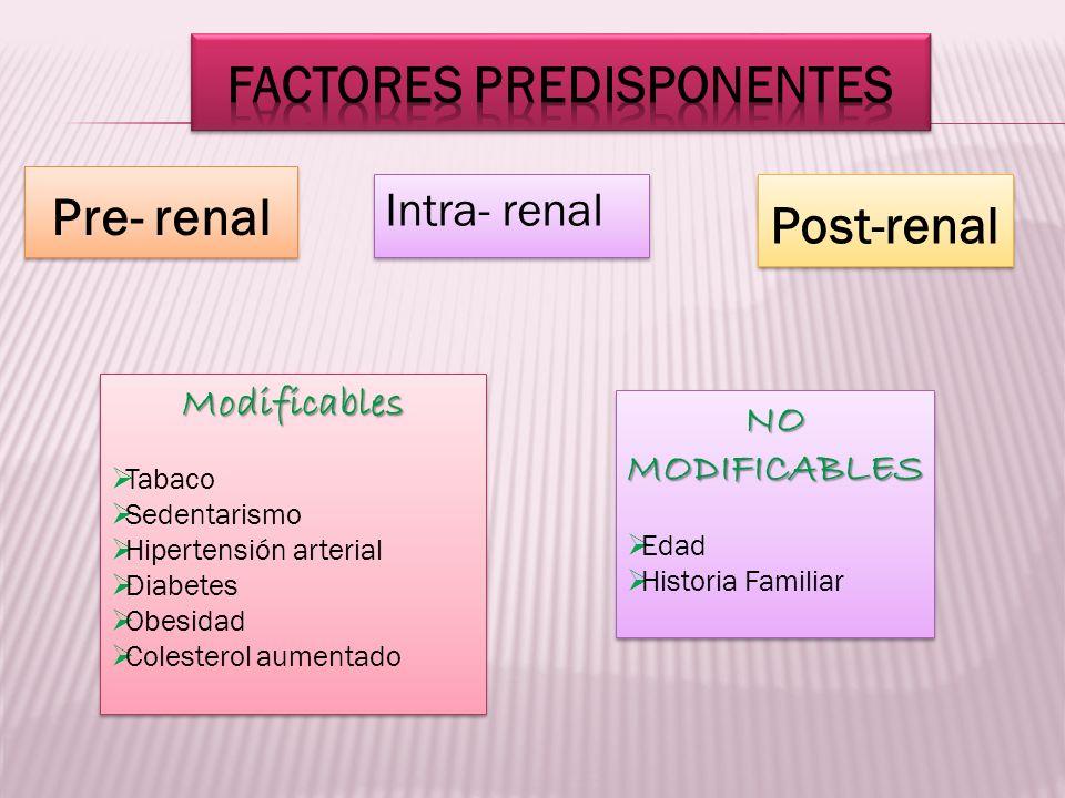 Pre- renal Intra- renal Post-renal Modificables Tabaco Sedentarismo Hipertensión arterial Diabetes Obesidad Colesterol aumentadoModificables Tabaco Se
