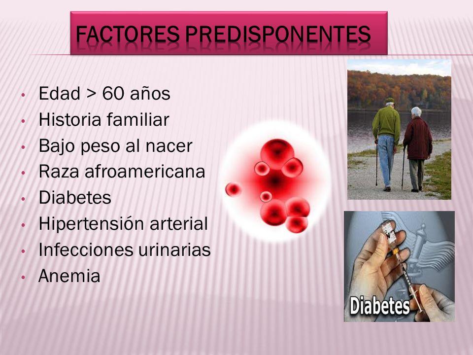 Edad > 60 años Historia familiar Bajo peso al nacer Raza afroamericana Diabetes Hipertensión arterial Infecciones urinarias Anemia
