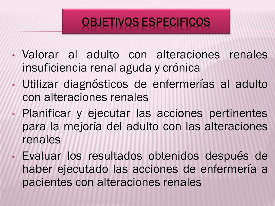 Valorar al adulto con alteraciones renales insuficiencia renal aguda y crónica Utilizar diagnósticos de enfermerías al adulto con alteraciones renales