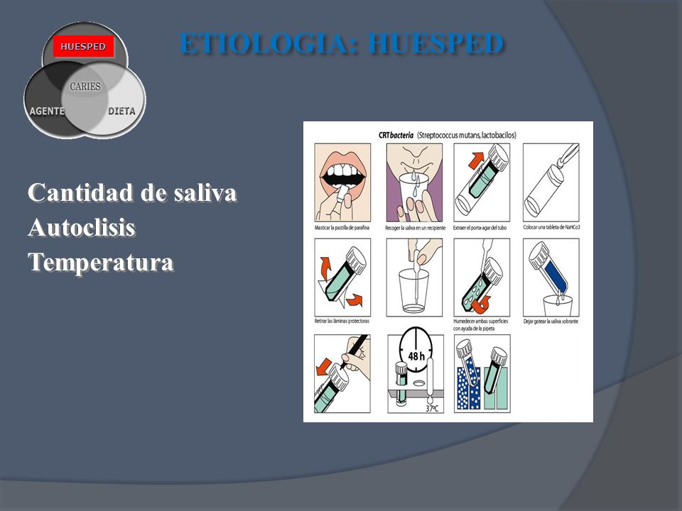 Cantidad de saliva Autoclisis Temperatura Cantidad de saliva Autoclisis Temperatura ETIOLOGIA: HUESPED HUESPEDHUESPED