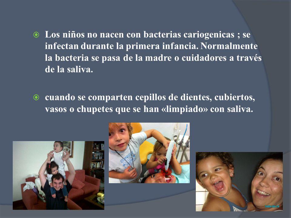 Los niños no nacen con bacterias cariogenicas ; se infectan durante la primera infancia. Normalmente la bacteria se pasa de la madre o cuidadores a tr