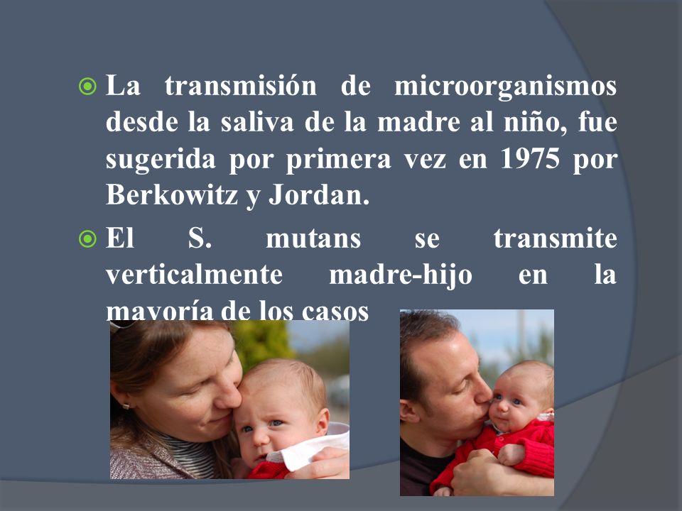 La transmisión de microorganismos desde la saliva de la madre al niño, fue sugerida por primera vez en 1975 por Berkowitz y Jordan. El S. mutans se tr