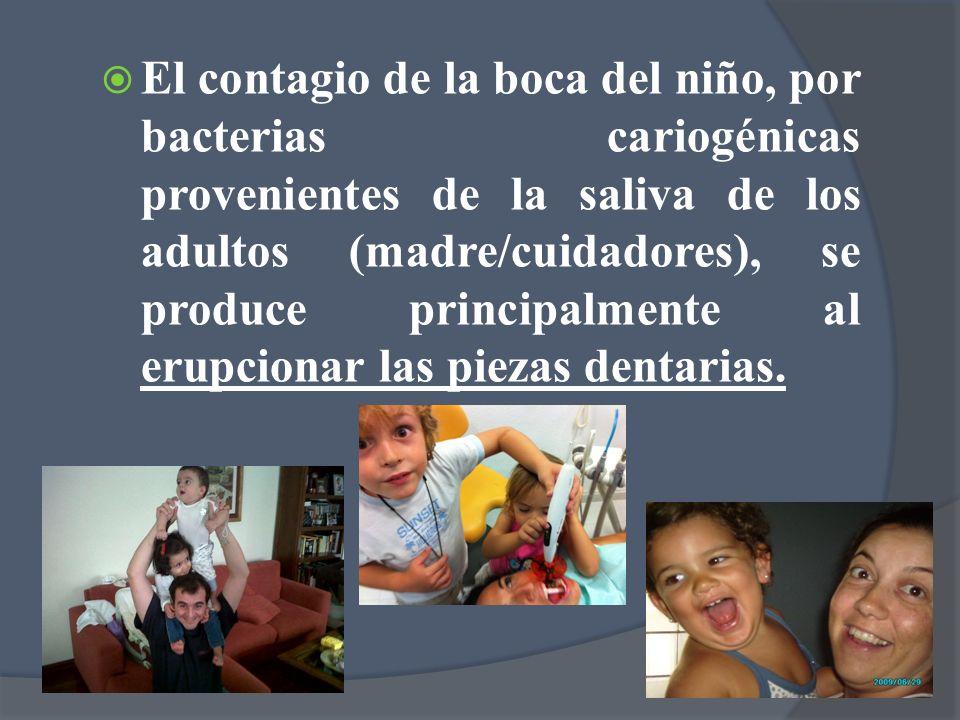 El contagio de la boca del niño, por bacterias cariogénicas provenientes de la saliva de los adultos (madre/cuidadores), se produce principalmente al