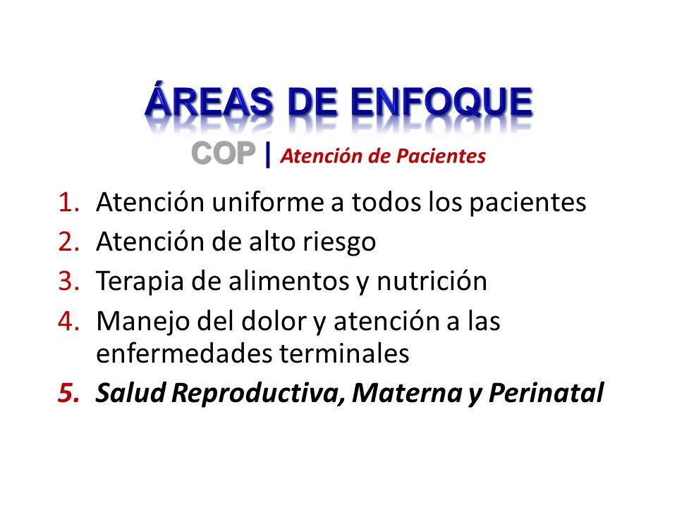 1.Atención uniforme a todos los pacientes 2.Atención de alto riesgo 3.Terapia de alimentos y nutrición 4.Manejo del dolor y atención a las enfermedade