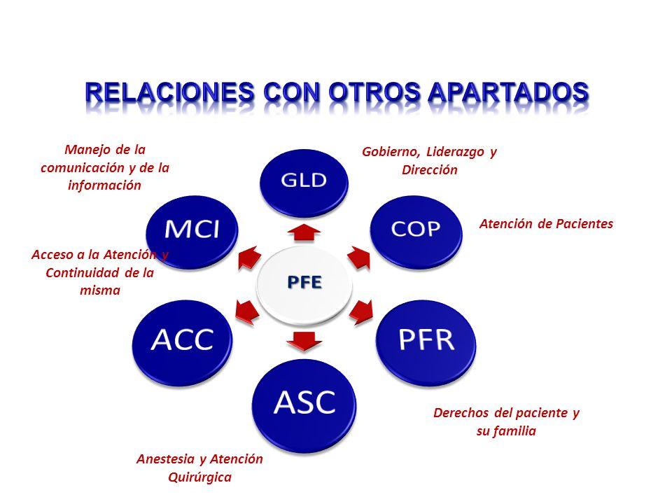 Gobierno, Liderazgo y Dirección Atención de Pacientes Derechos del paciente y su familia Anestesia y Atención Quirúrgica Manejo de la comunicación y de la información Acceso a la Atención y Continuidad de la misma