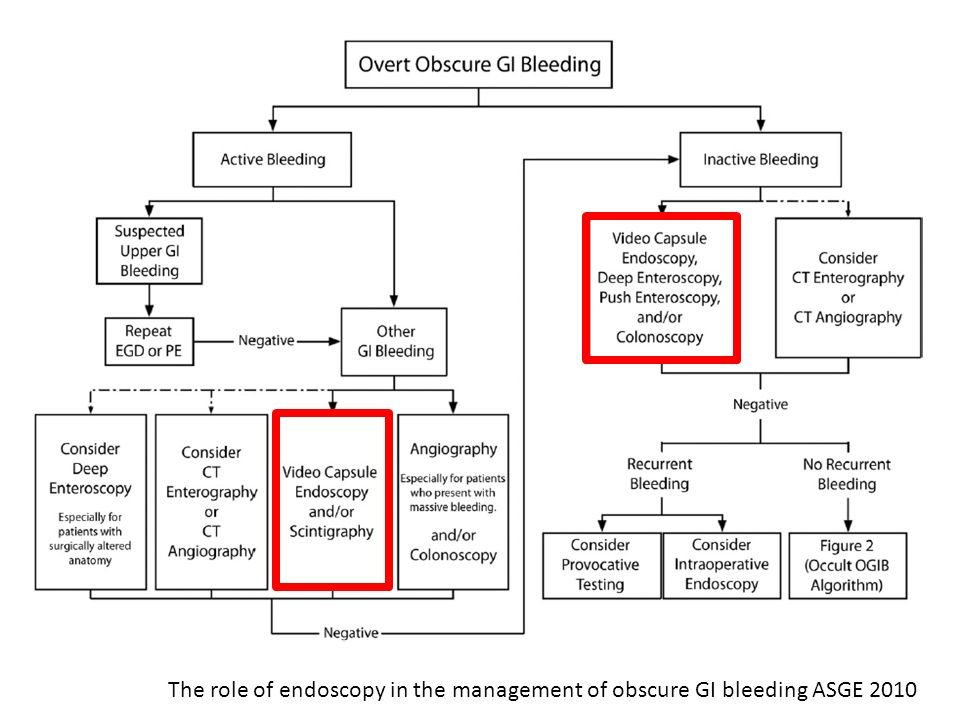 The role of endoscopy in the management of obscure GI bleeding ASGE 2010