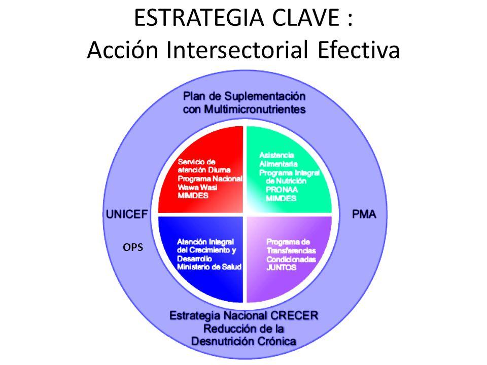 ESTRATEGIA CLAVE : Acción Intersectorial Efectiva OPS